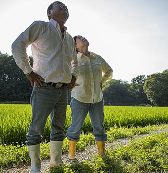 FB 52 青ジナの花に蜂が来て居るかどうか観る 忠則さんと貴美子さん夫妻 .jpg