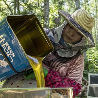 FB 65 蜂蜜を漉し器に移す悠貴さん .jpg
